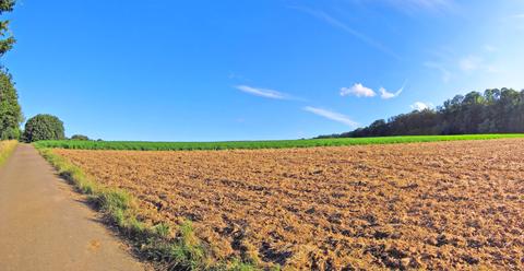 להפליא בדיקת זכאות להחזר מס שבח מקרקעין בעסקה של מכירת שטח חקלאי - החזר SJ-89